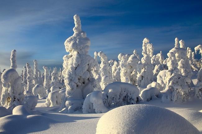 Такая долгая зима by Олег Семененко