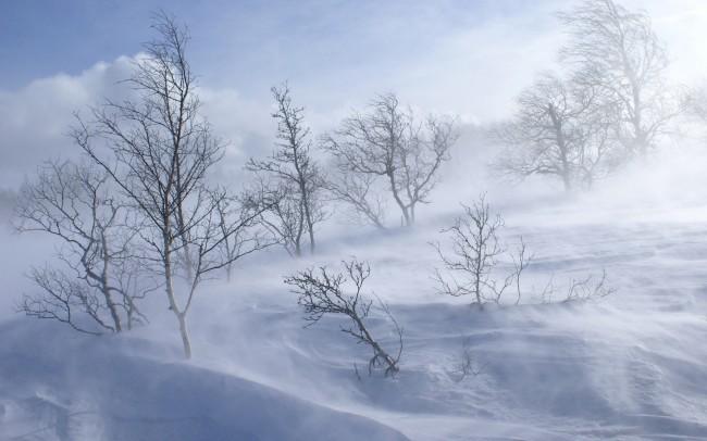 winter-blizzard